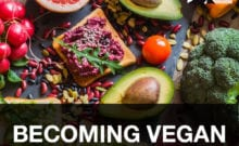 HOS 26 | Becoming Vegan